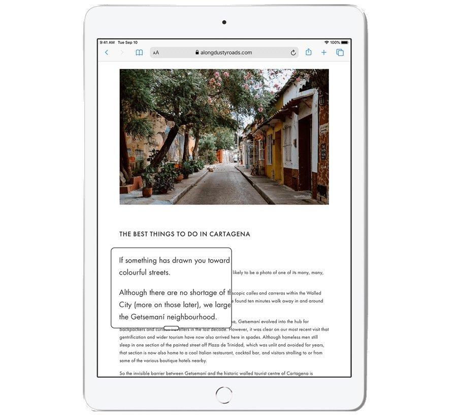 Tablet APPLE iPad 10.2 - Lupa