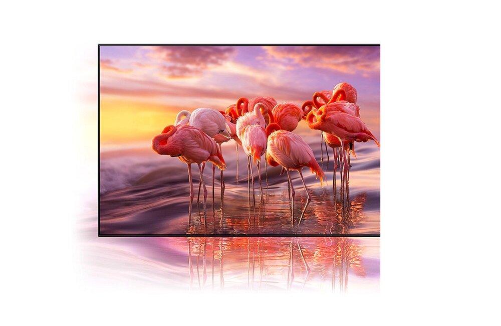 SAMSUNG LED TV QE65QN85A Технология квантовых точек